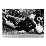 Vital – Elasticidade e reflexos