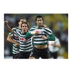 Entrada de leão na Liga dos Campeões 2006/07