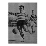 5-0 ao Benfica nas Amoreiras!