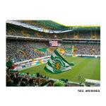 Desportos eletrónicos a crescer no Sporting Clube de Portugal